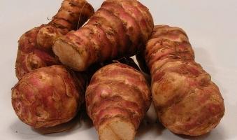 Azienda agricola Rusciano -Topinambur 1Kg
